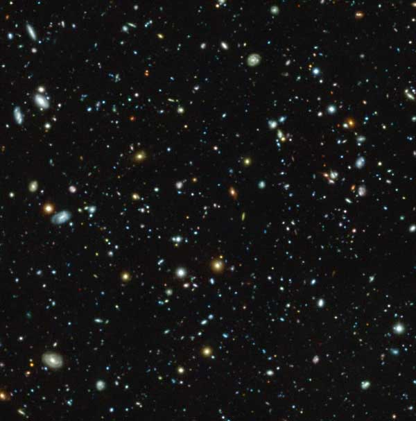 MUSE-Hubble Ultra Deep Field