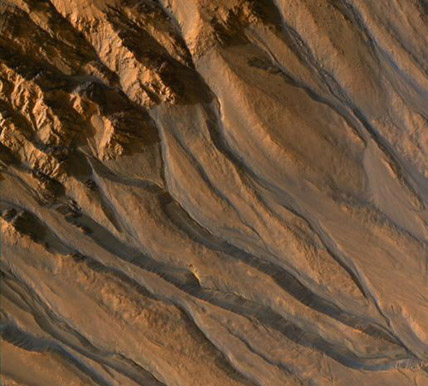 Gullies on a Martian crater's rim