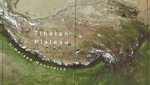 Himalaya Close-up