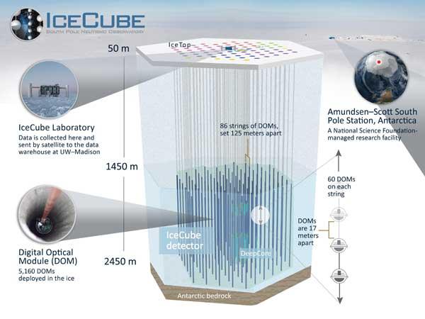 IceCube schematic
