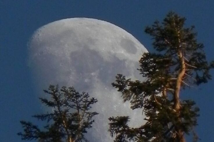 Moon over Sequoia National Park