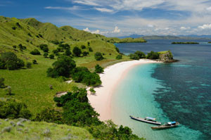 Indonesian coastline
