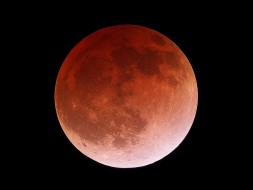 Image of red Moon during lunar eclipse April 15, 2014
