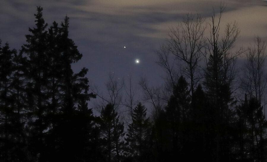 Jupiter and Saturn above treetops
