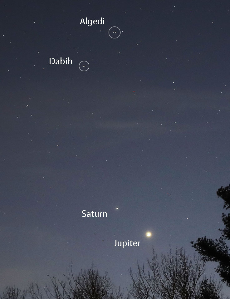 Jupiter and Saturn gleam below Algedi and Dabih