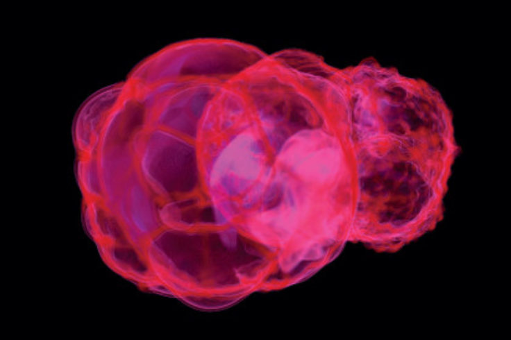 Supernovae Simulations Carve Local Bubble