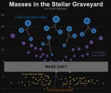 neutron star and black hole masses