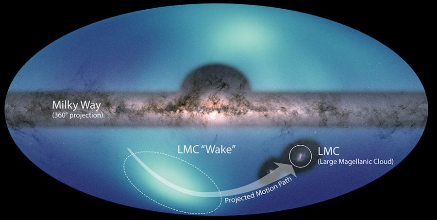 "The Large Magellanic Cloud's ""wake"""