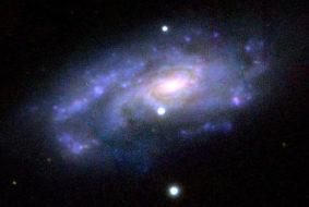 Fiddler Crab galaxy