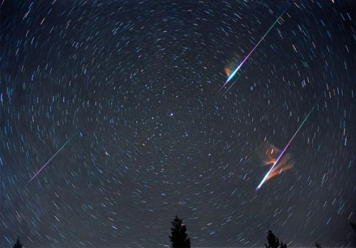 Leonids are well known for their fireballs. Tony Hallas captured two in a single frame during the 2001 Leonid shower.  Each also left a persistent, glowing train. Tony Hallas