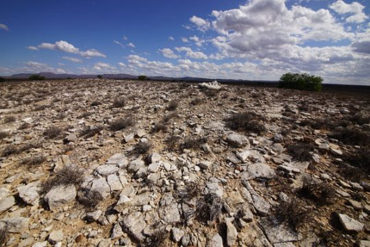 Shards of limestone mark the site of the 250,000-year-old Kalkkop impact crater in South Africa.