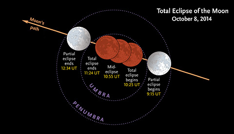 Stages of the October 14th lunar eclipse