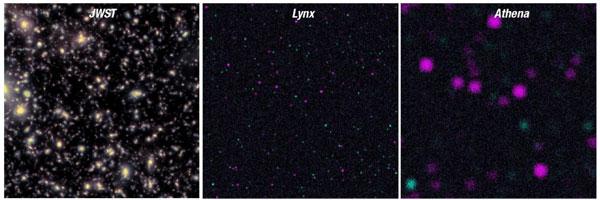 Lynx vs. Athena: Black hole seeds