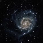 M101SN