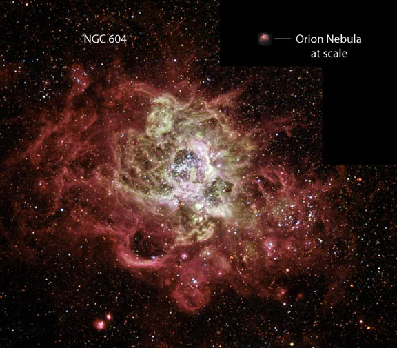 Orion and NGC 604 Compared