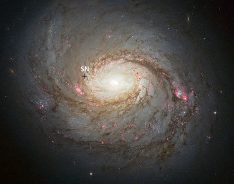Image of M77 with location of supernova marked