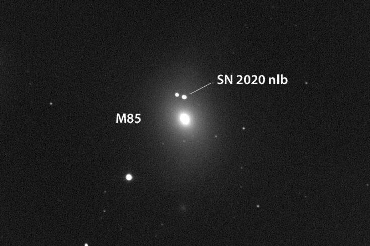 M85 supernova
