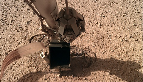 Mars Mole