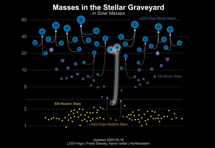 masses of known black holes and neutron stars