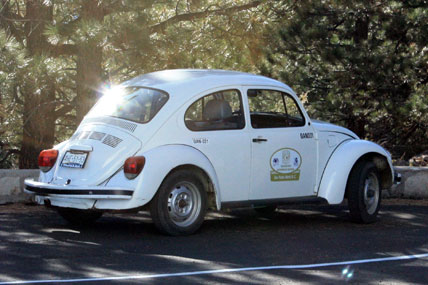 "Mexican VW ""Beetle"""