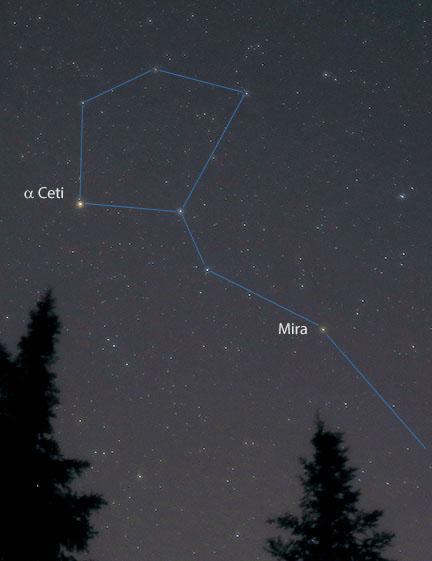 Mira Makes January Nights Wonderful Sky Telescope Sky