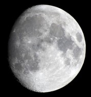 High Moon, high hopes