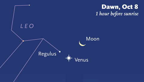 Moon-Venus-Regulus on October 8th