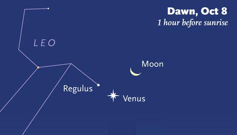 Moon-Venus-Regulus on October 8th
