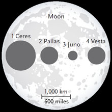 Moon and asteroids compared