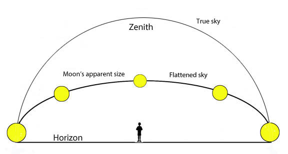 Deception by Perception: The Moon's apparent size relates to our perception of the sky as a flattened dome. When the Moon is viewed near the horizon, our brains judge it to be farther away than when seen near the zenith. Based on that assumption, we inflate its size to accommodate the false extra distance. Click graphic for more information.