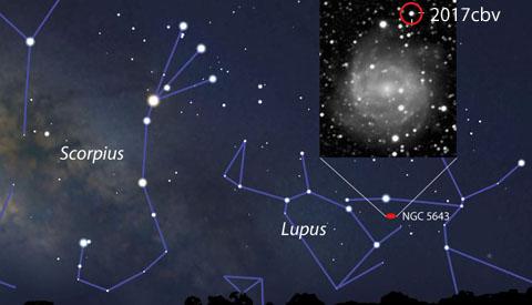 Bright supernova in Lupus