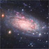 NGC 3621, a bulgeless spiral galaxy