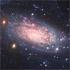 NGC 3621, a bulgeless spiral galaxy
