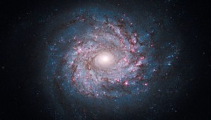 This Hubble mosaic of NGC 3982, located 68 million light-years away shows an array of star birth and death.  NASA