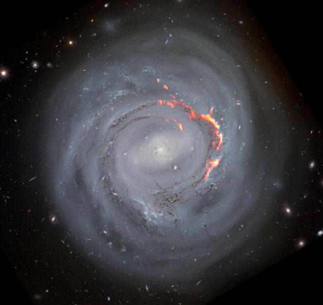 Barred spiral galaxy NGC 4921