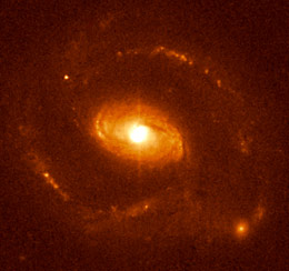 quasar host galaxy
