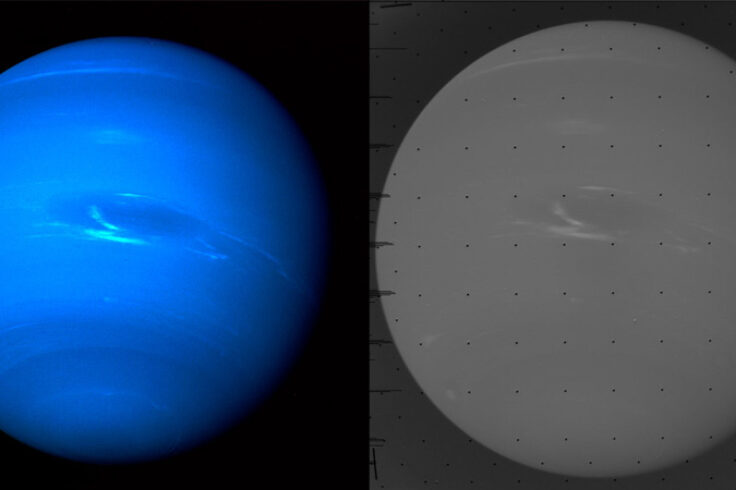 Neptune, raw and processed
