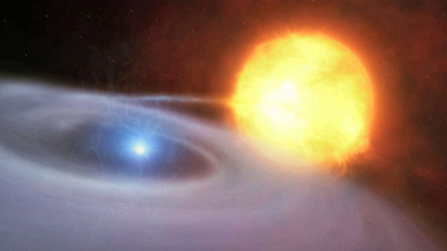 White dwarf and companion star