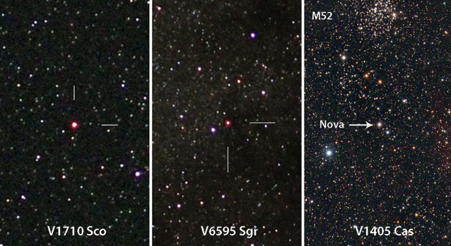 Three new novae
