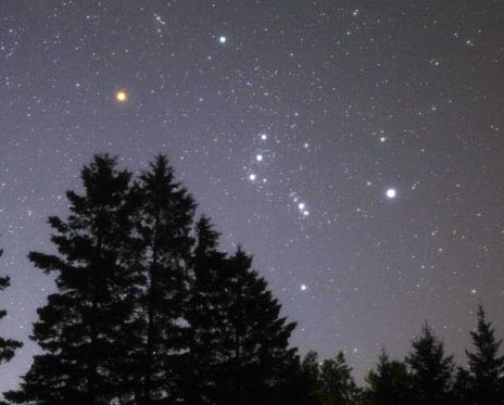 With a leg up over the trees, Orion announces winter's approach