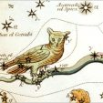 Owl of Atlases Past