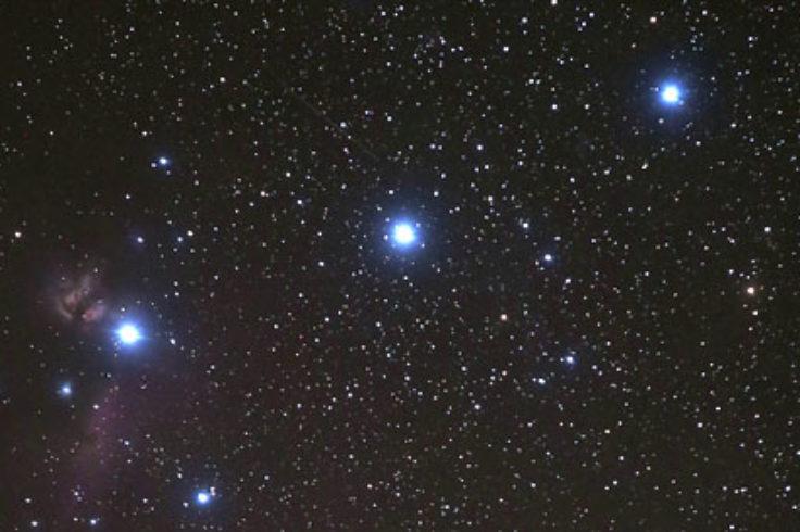 Orion's Belt by Bob King