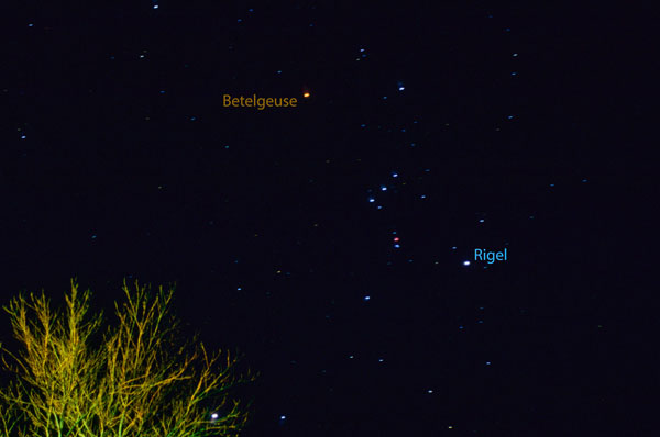Betelgeuse vs. Rigel
