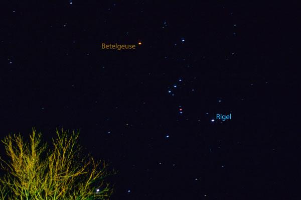 Betelgeuse vs. Rigel