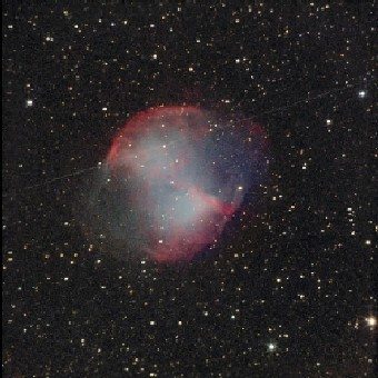 Perseid meteor across the Dumbbell Nebula