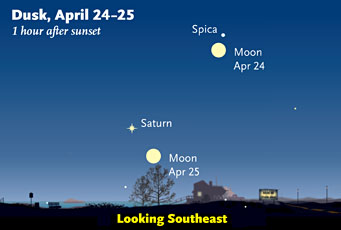 Saturn and Spica in April