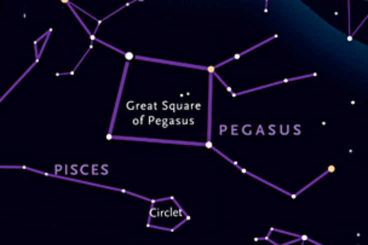 Where to find Pegasus