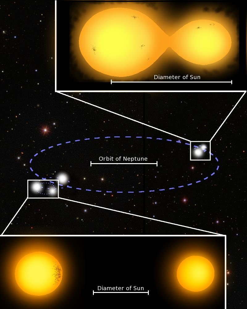This diagram depicts the quintuple star system to scale, using Neptune's orbit around the Sun for reference. (The binary orbits are not included since they are too small to show on this image.) The box at the top shows what a contact binary might look like. These two stars orbit close enough to touch and share their mass. The box at the bottom shows a detached binary. The orbital periods are 6 hours and 31 hours, respectively. Lohr and colleagues think the fifth star is located to the right of the separated binary, though this is not confirmed. Marcus Lohr