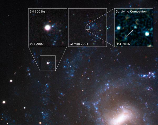Stellar Thief Survives Supernova Explosion