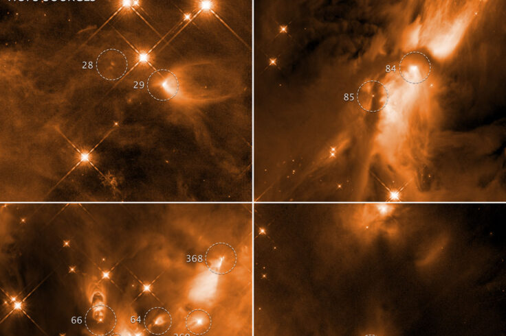 Infant stars in Orion